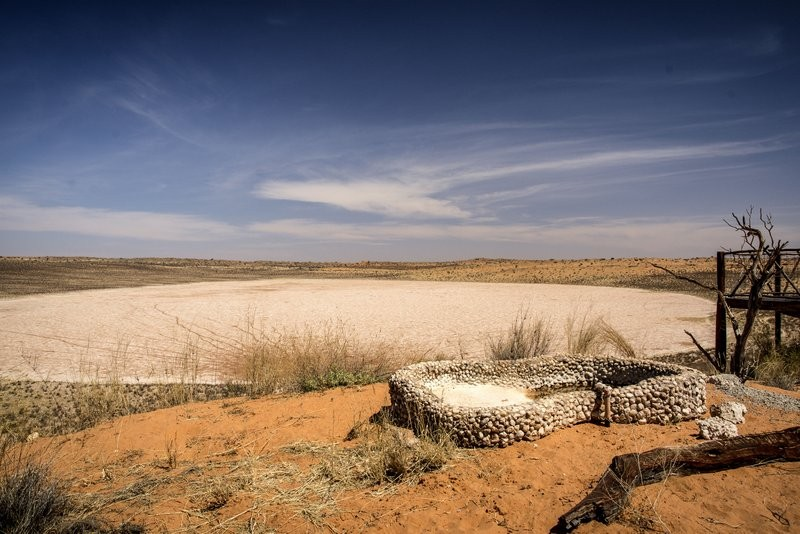 xaus-lodge-saltpan-and-drinking-hole