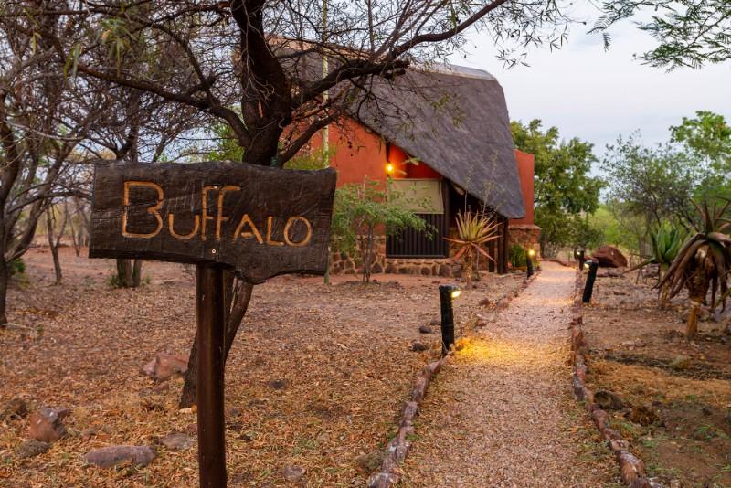 Buffalo-pathway
