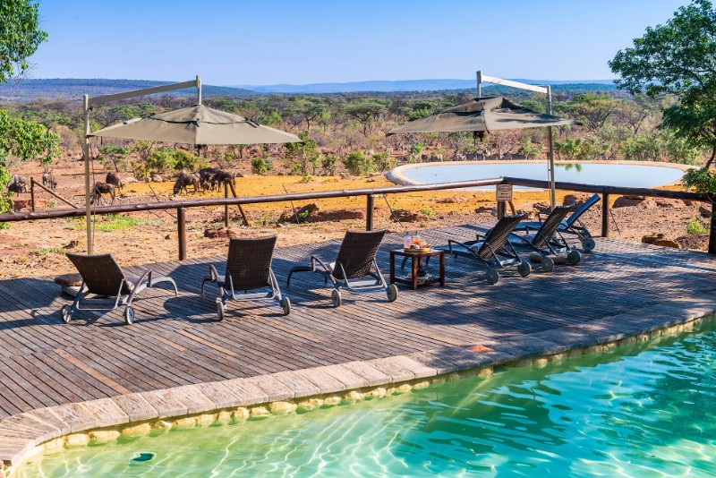 Jamila-Lodge-Main-Pool-with-views-of-the-watering-hole-and-Reserve