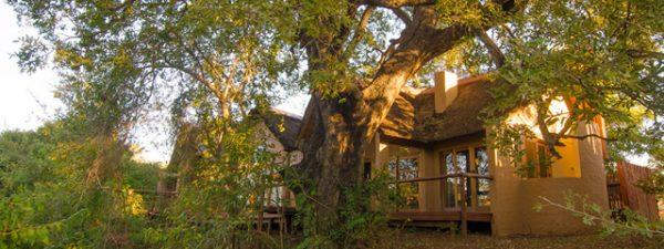 Shishangeni Safari Lodge Exterior view of accommodation