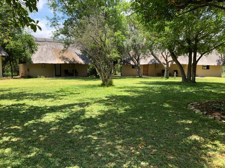 kwenga-exterior-front-entrance-of-impala-and-zebra