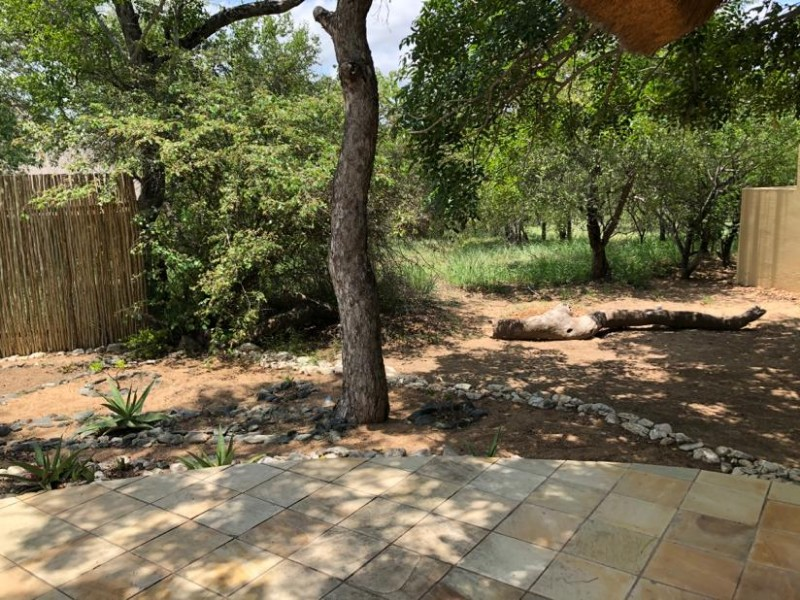 kwenga-exterior-luxury-giraffe-no-3-from-room-to-bush2