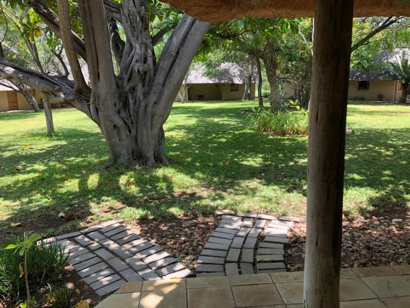 kwenga-standard-room-LION-from-door-to-garden