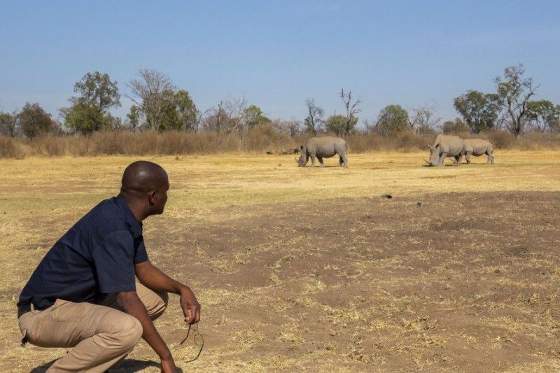 Fifty-Seven-waterberg-game-viewing2