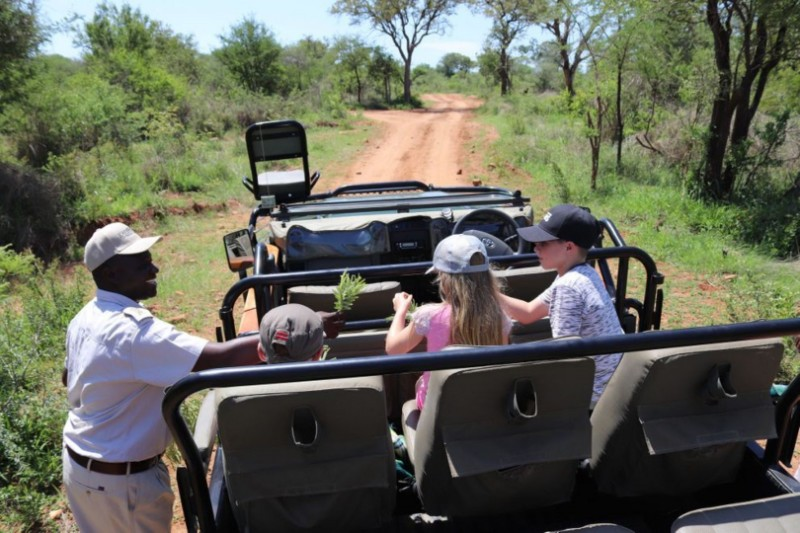kiddies-and-game-drive-Large
