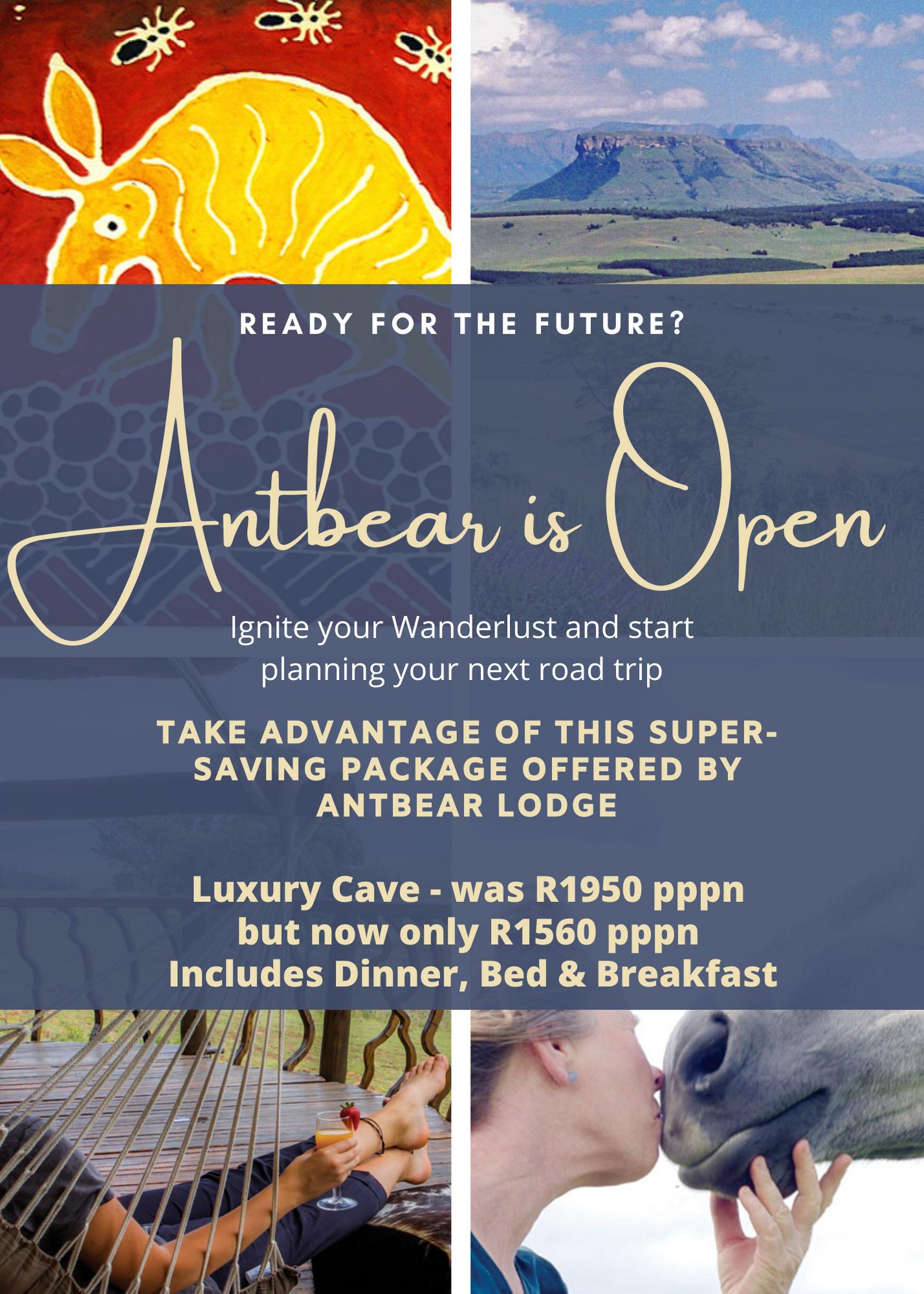 Antbear Lodge - Estcourt - Drakensberg